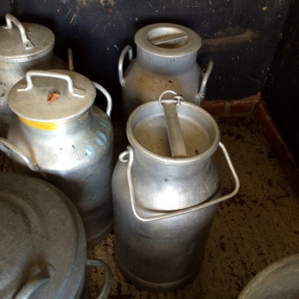 Selection of milk churns. Many have names of dairies on them